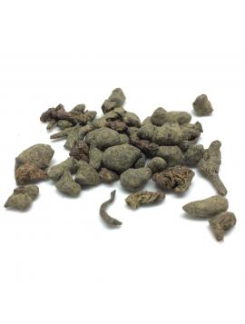 Stone Ginseng